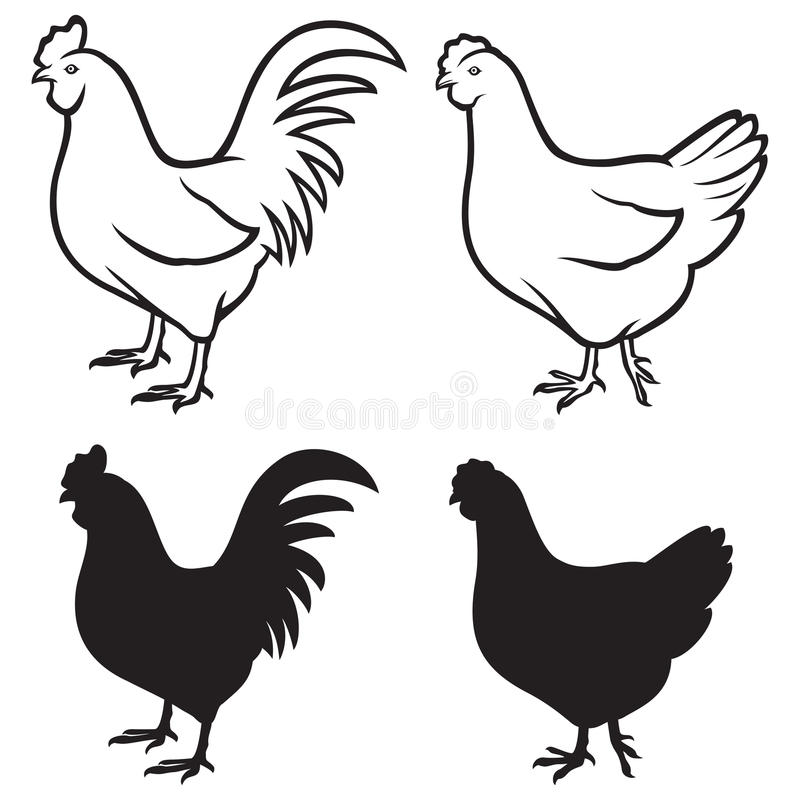 Rooster (cock) and chicken royalty free illustration