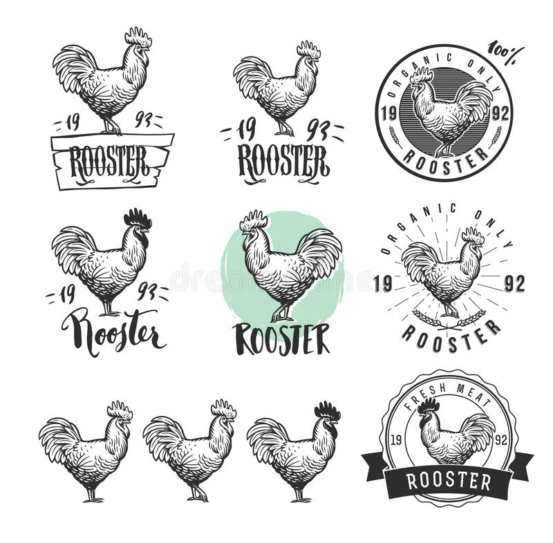 Rooster. Cock. Chicken product logotypes set. Hen meat and eggs vintage produce elements. Badges and design elements for vector illustration