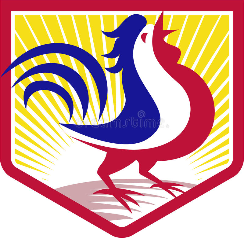 Rooster Cockerel Crowing Crest. Illustration of a rooster cockerel crowing facing side set inside crest shield with sunburst done in retro style royalty free illustration