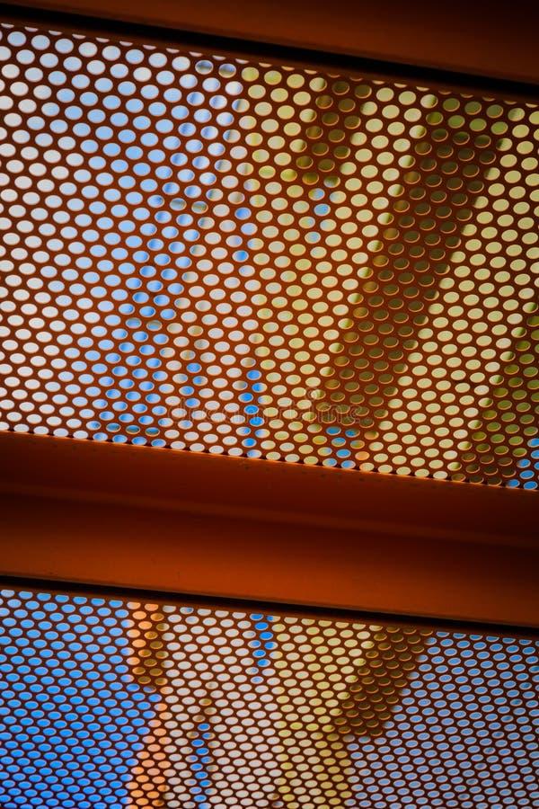 Rooster met een patroon II stock foto