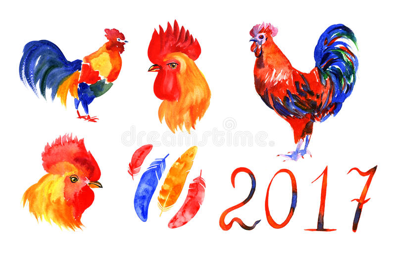 Rooster, red cock, Chinese zodiac symbol of the 2017 year. Watercolor illustration. stock illustration