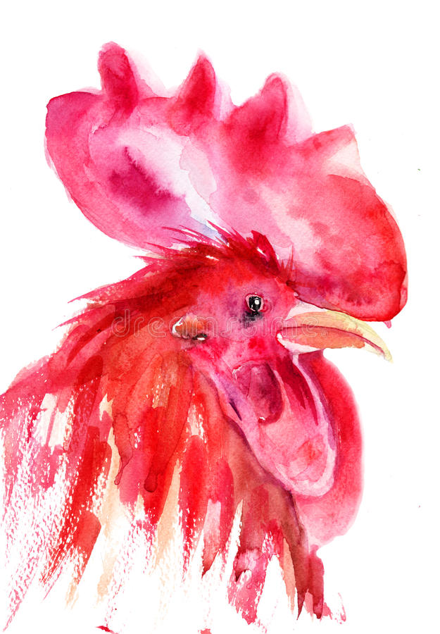 Download Rooster, Watercolor Illustration Royalty Free Stock Photos - Image: 27155728