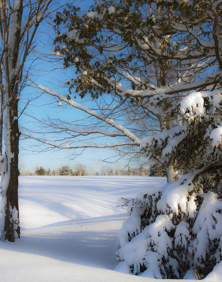 Download Root River Golf Course stock image. Image of golf, snow - 7629903