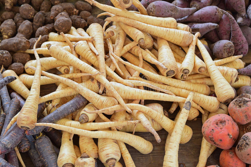 Root vegetables displayed together on a wooden table stock photography