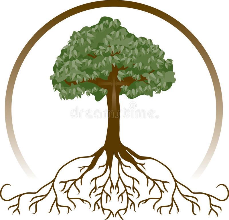 Rooted in Christ. A tree with wide-spread roots and a cross, symbolizing deeply-rooted faith. Cross shape can be easily removed for other uses. Items have been vector illustration