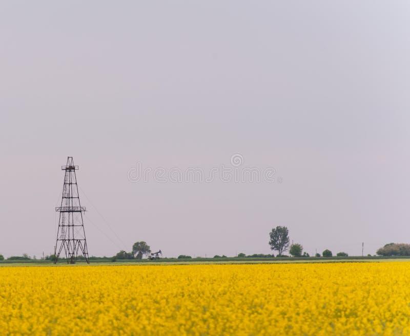 Ropa i gaz well takielunek, zarysowany wiejski canola pole fotografia royalty free