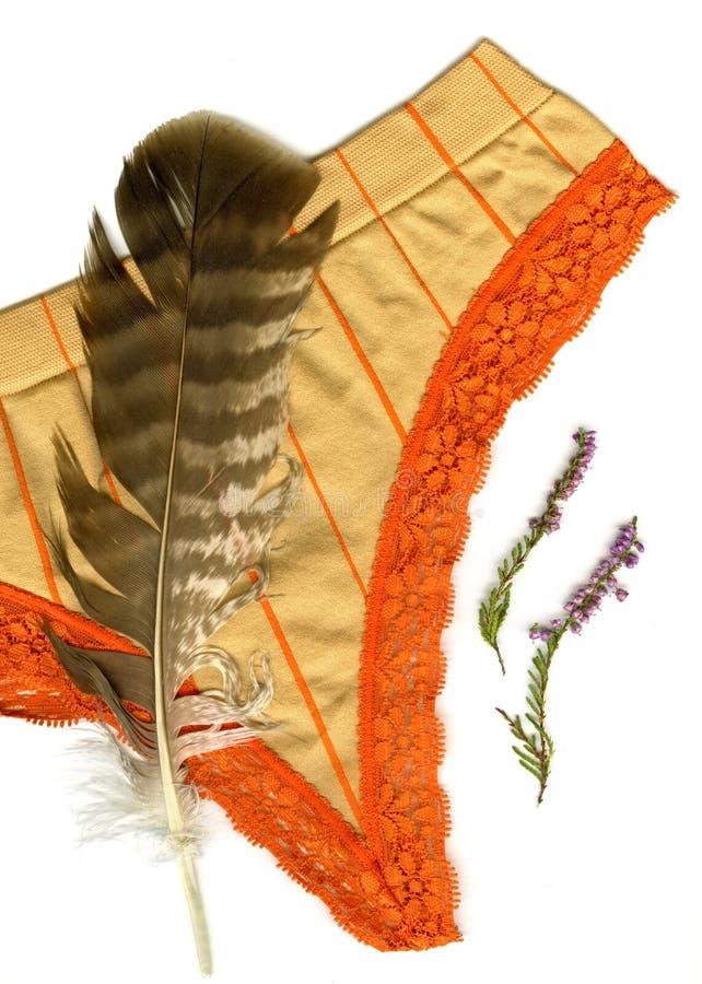 Ropa interior de encaje foto de archivo imagen de for Encaje ropa interior