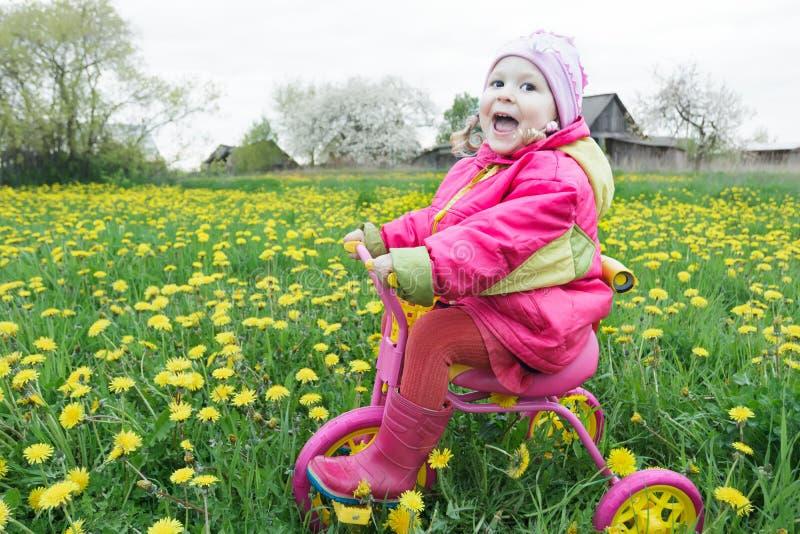 Ropa lilla flickan som kör rosa färger och guling, cykla över våren som blomstrar maskrosängen royaltyfri foto