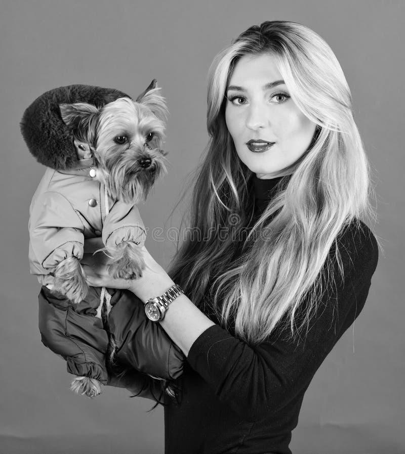 ropa y accesorios Qu? razas del perro deben llevar las capas Perro del abrazo de la muchacha peque?o en capa La mujer lleva el te fotos de archivo