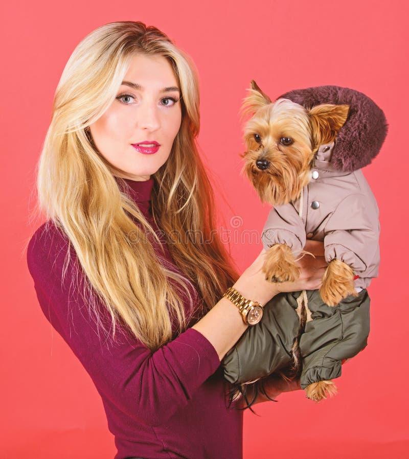 ropa y accesorios Qu? razas del perro deben llevar las capas Perro del abrazo de la muchacha peque?o en capa La mujer lleva el te fotos de archivo libres de regalías