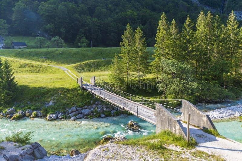 Rope bridge on the river Soca, Triglavski national park, Slovenia. Alpine, alps, background, beautiful, colorful, environment, europe, forest, idyllic, julian stock image