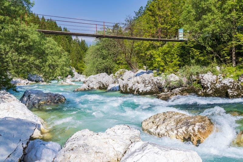 Rope bridge on the river Soca, Triglavski national park, Slovenia. Alpine, alps, background, beautiful, colorful, environment, europe, forest, idyllic, julian royalty free stock photo