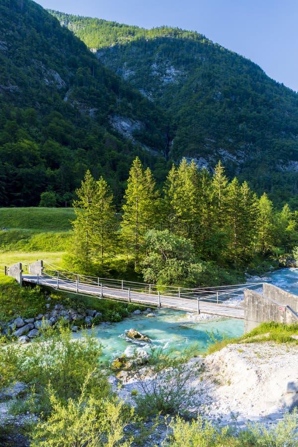 Rope bridge on the river Soca, Triglavski national park, Slovenia. Alpine, alps, background, beautiful, colorful, environment, europe, forest, idyllic, julian stock photos