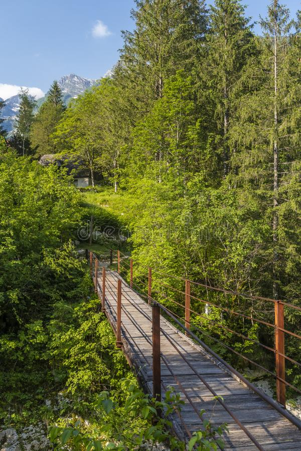 Rope bridge on the river Soca, Triglavski national park, Slovenia. Alpine, alps, background, beautiful, colorful, environment, europe, forest, idyllic, julian royalty free stock images