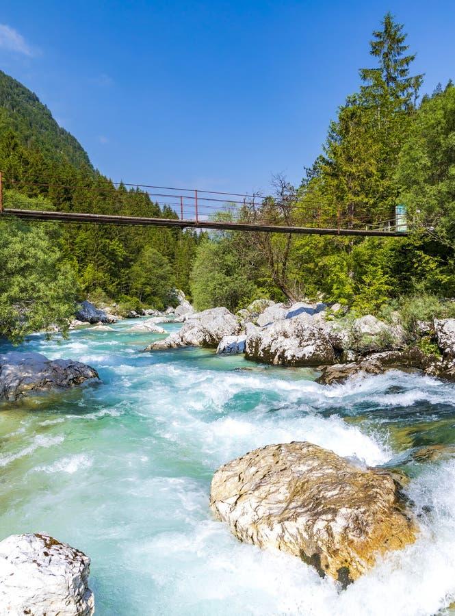 Rope bridge on the river Soca, Triglavski national park, Slovenia. Alpine, alps, background, beautiful, colorful, environment, europe, forest, idyllic, julian royalty free stock photos