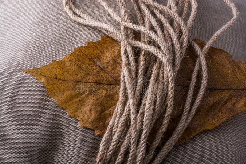 Rope and dry leaf as an autumn background royalty free stock image