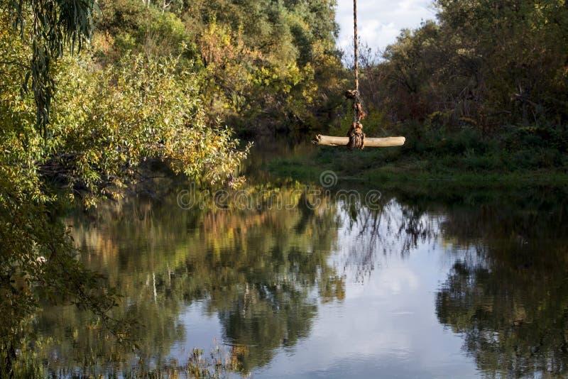 Rope el oscilación en la cala de Putah en Davis, California, los E.E.U.U. imagen de archivo libre de regalías
