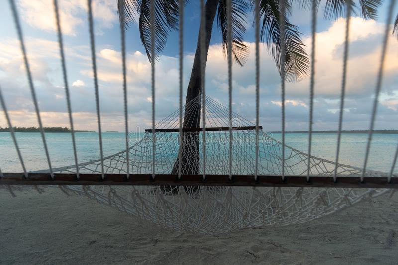 Rope hammock under the palm trees, frontal view, Aitutaki, Cook Islands royalty free stock photography