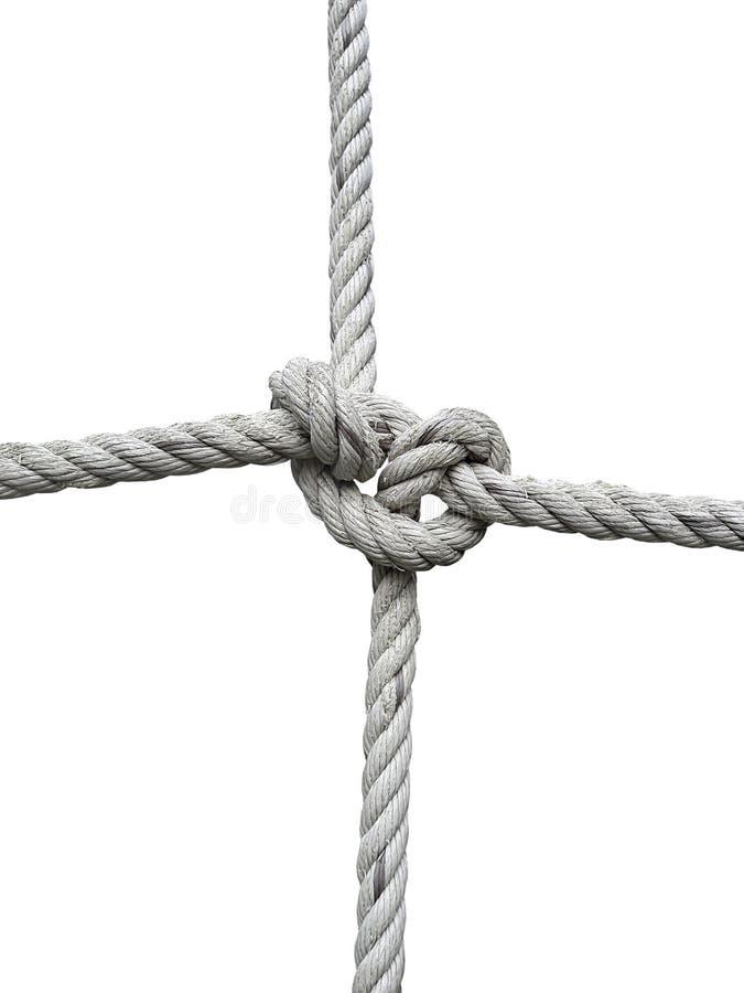 Rope la soga con la ejecución del nudo del ` s del verdugo delante del fondo blanco imagenes de archivo