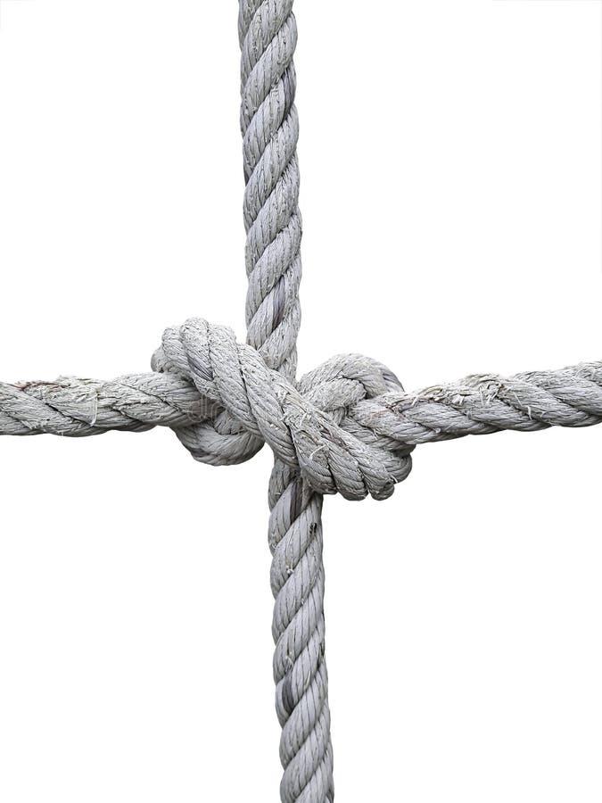 Rope la soga con la ejecución del nudo del ` s del verdugo delante del fondo blanco imagen de archivo libre de regalías