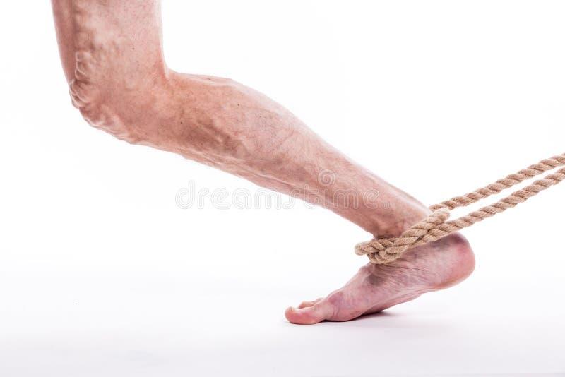 Rope la tenuta della gamba umana che indispone le vene varicose del extrem più basso fotografia stock