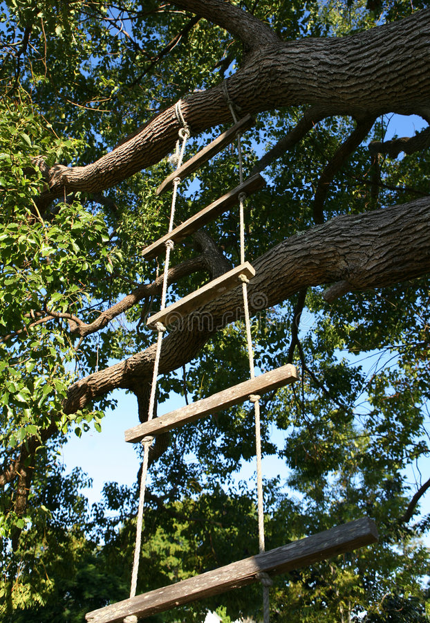Rope Ladder royalty free stock images