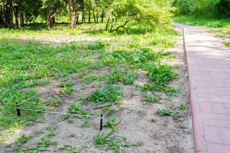 Rope and stake delimitation made by landscapers to begin work landscaping an green park.  royalty free stock images