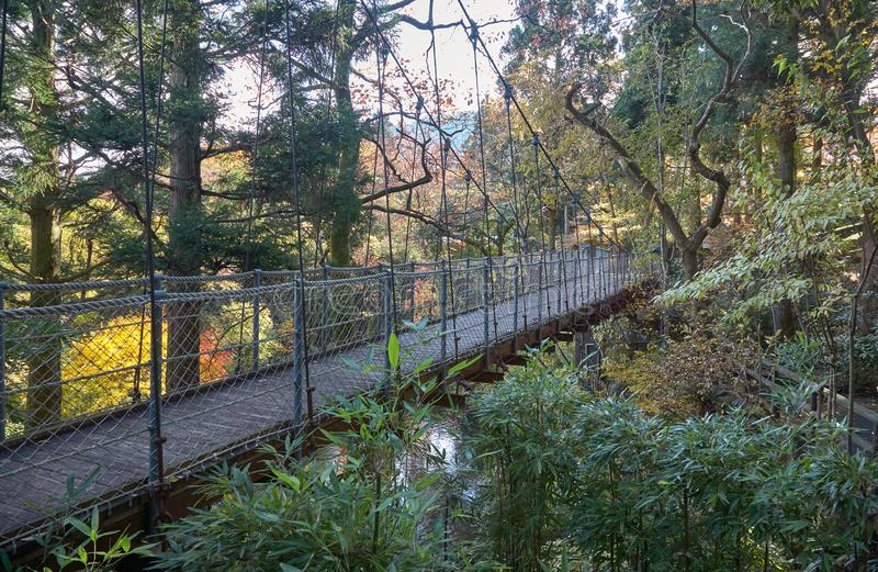 A suspension bridge over the pond in Hakone Open Air Museum. Hakone. Kanagawa. Japan royalty free stock photography