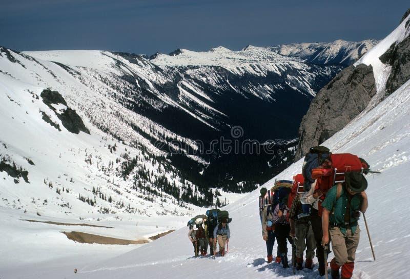 Rope teams slogging. Up steep snow fields on Emmons Glacier,Mt Rainer,Washington royalty free stock photos