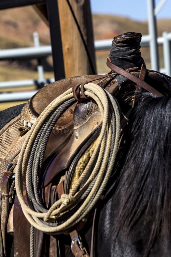 Rope Tied to Saddle stock photos