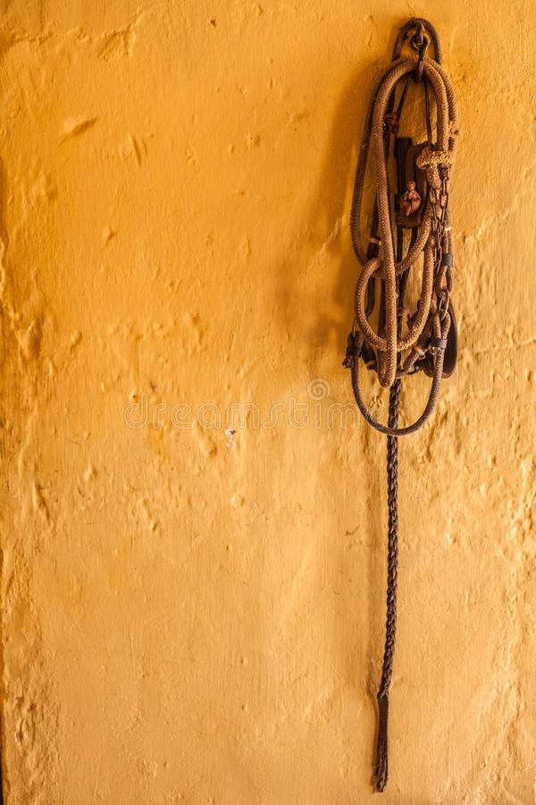 Rope on the wall. Rope hung on yellow farm wall, cowboy tool stock photo