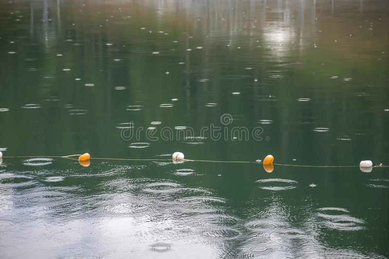 Rope with white and yellow restriction markers on water surface for prohibiting of swimming in deep lake or sea.  stock photos