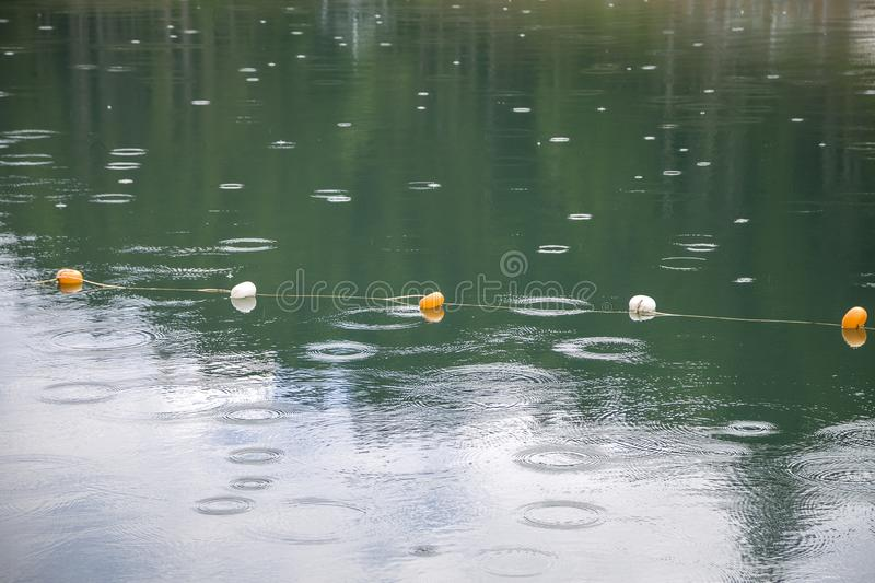 Rope with white and yellow restriction markers on water surface for prohibiting of swimming in deep lake or sea.  royalty free stock image