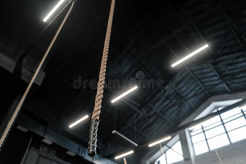 Ropes hanging from the ceiling in the gym. Copy space, place for text. Crossfit and workout gym royalty free stock image