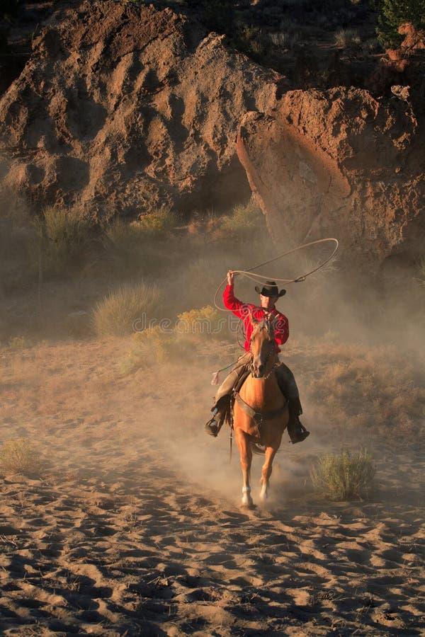 Roping Cowboy lizenzfreie stockfotografie