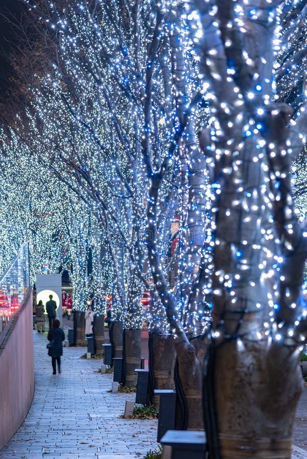 Roppongi Hills winter illumination festival ( Keyakizaka Galaxy Illuminations ). Beautiful view, popular tourist attractions, travel destinations for holiday stock images