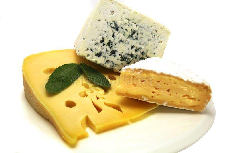 Roquefort e camembert do queijo suíço fotos de stock