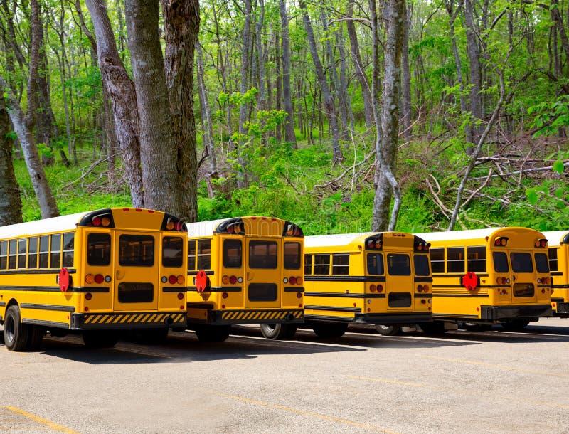 Ror typiska skolbussar för amerikan i en utomhus- skog royaltyfri bild