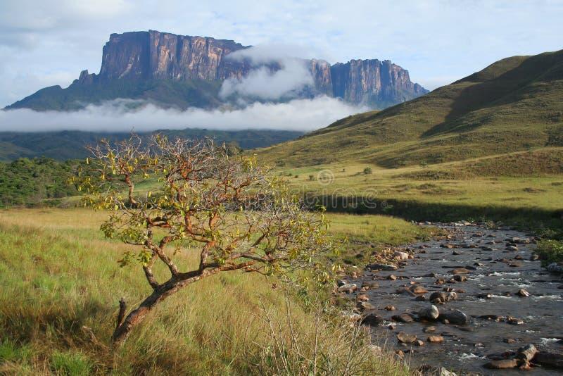 Roraima山的看法在委内瑞拉 图库摄影