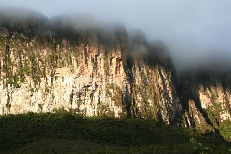 Download Roraima απότομων βράχων στοκ εικόνα. εικόνα από βενεζουέλα - 1526413
