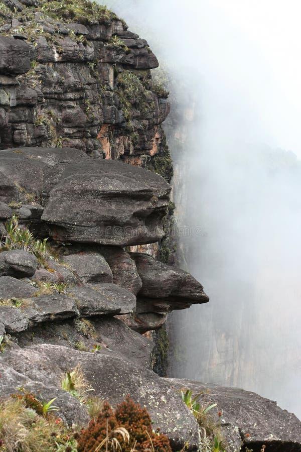 Download Roraima απότομων βράχων στοκ εικόνα. εικόνα από τοίχοι - 1526431
