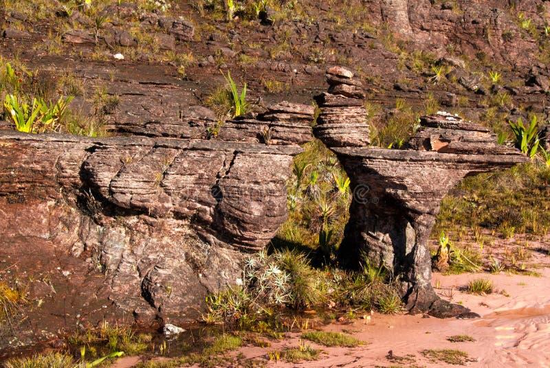 Roraima Tepui Summit, Gran Sabana, Venezuela. Limestones structures on the summit of Roraima Table Mountain, Great Savanna, Canaima National Park, Venezuela stock photos