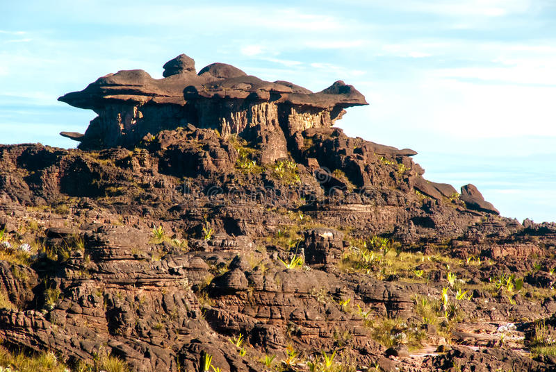 Roraima Tepui Summit, Gran Sabana, Venezuela. Limestones structures on the summit of Roraima Table Mountain, Great Savanna, Canaima National Park, Venezuela stock images