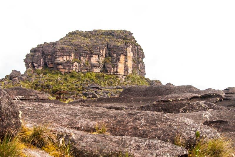 Roraima Tepui toppmöte, Gran Sabana, Venezuela royaltyfri bild