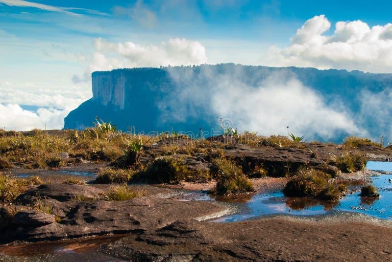 Roraima Tepui toppmöte, Gran Sabana, Venezuela royaltyfri foto
