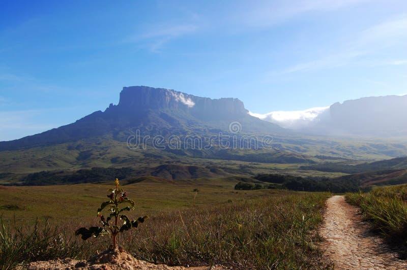 Roraima trek - Venezuela royalty free stock photography