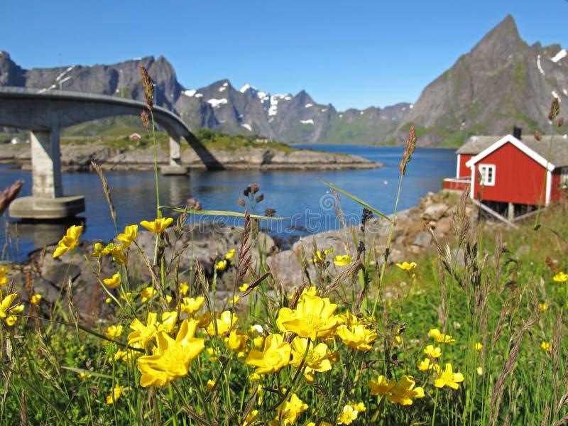 Rorbu Hütte auf Lofoten lizenzfreie stockfotografie