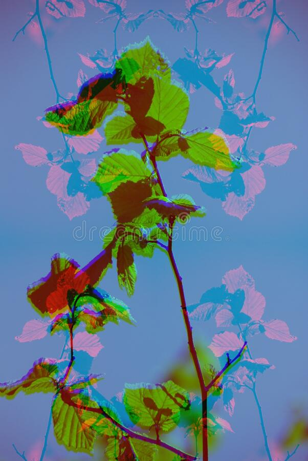 Trippy Glitch Digital Abstract Art Psychedelic Artwork Colorful Space. Rosé Glitch Digital Abstract Art royalty free stock image