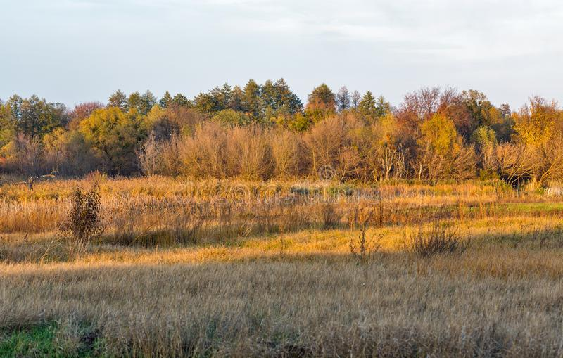Ros river autumn landscape, Ukraine royalty free stock photography