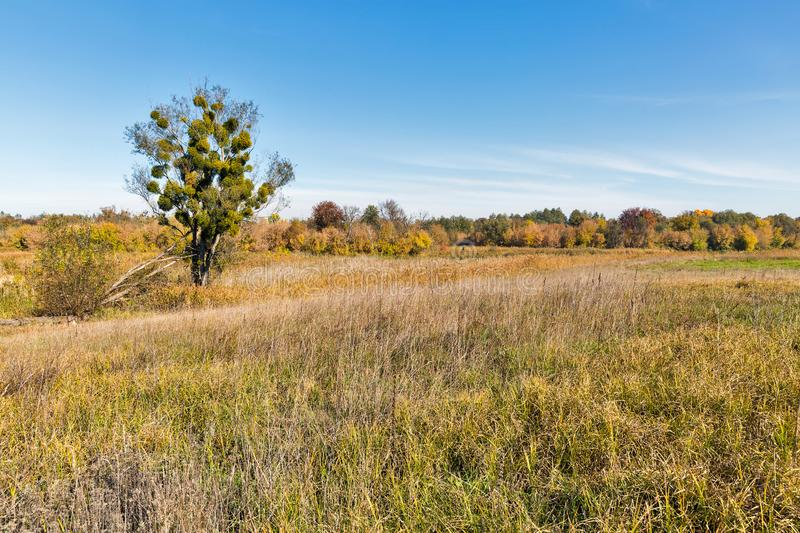 Ros river valley autumn landscape at sunset, Ukraine royalty free stock images